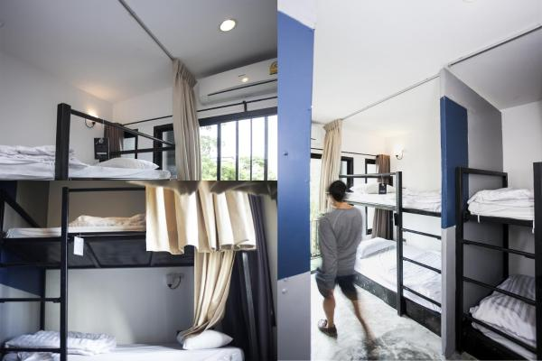Bunk Bed in 6-Bed Mixed Dormitory Room( D )