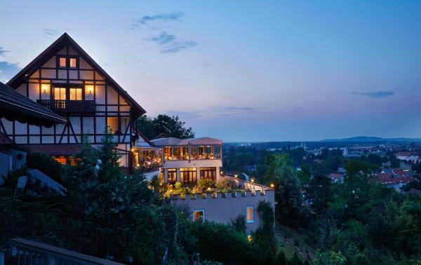 Hotel Pictures: Kapuzinergarten Panoramahotel & Eventrestaurant, Breisach am Rhein