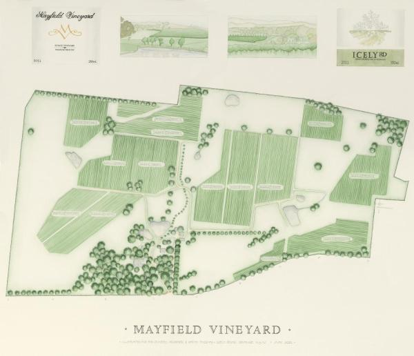 Φωτογραφίες: Mayfield Vineyard, Orange