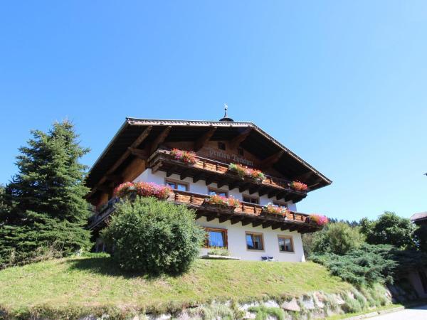 ホテル写真: Lammerbichl, Hollersbach im Pinzgau