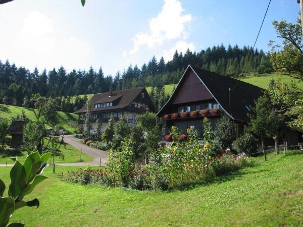 Hotel Pictures: Fiegenhof, Oberkirch