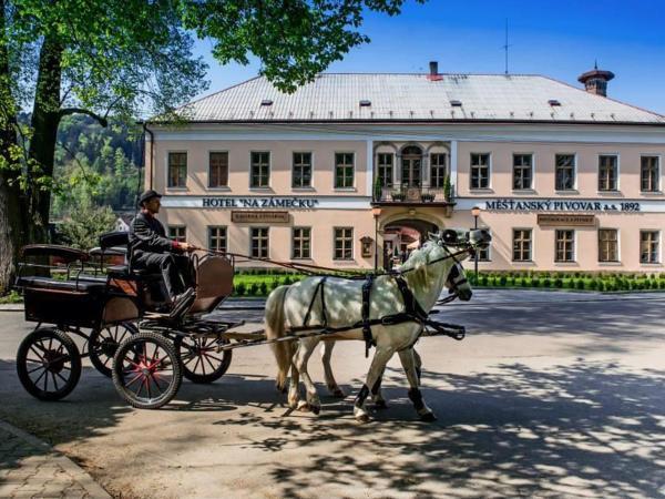 Hotel Pictures: Hotel Na Zámečku, Ústí nad Orlicí
