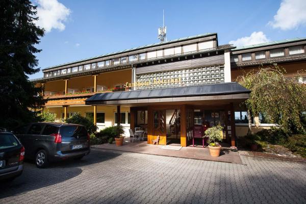 Hotel Pictures: Hotel Adlerhof, Straubenhardt