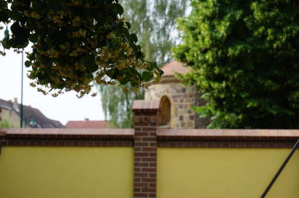 Hotelbilleder: L&L Skaters Home, Langenlipsdorf