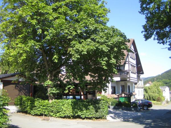 Hotel Pictures: Hotel Garni Berghaus Sieben, Bad Laasphe