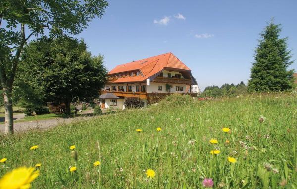 Hotelbilleder: Gasthof zum Breitenberg, Bad Peterstal