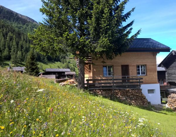 Hotel Pictures: Chalet Daheim, Reckingen - Gluringen