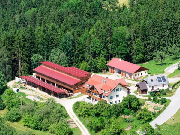 Fotos do Hotel: Ferienwohnungen Bauernhof Schilcher, Sankt Stefan im Lavanttal
