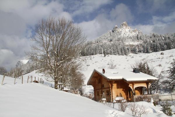 Hotel Pictures: Chalet Haute Savoie, Bernex