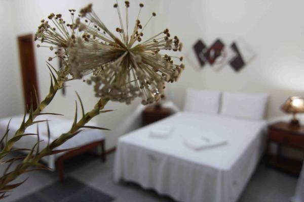 Hotel Pictures: Pousada Paraiso Perdido, Cacha Pregos