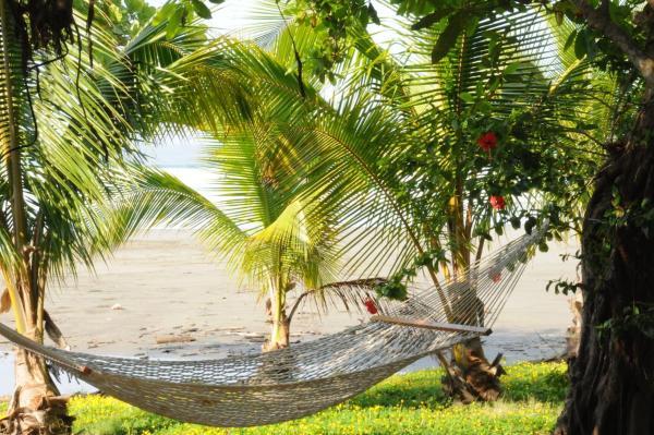Hotel Pictures: Sand Dollar Cove, La Javilla