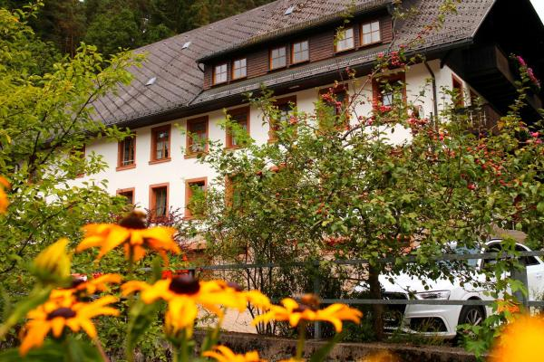 Hotel Pictures: Gästehaus zum Goldenen Rössle, Gremmelsbach