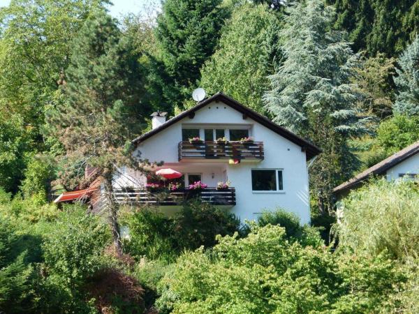 Hotel Pictures: Ferienwohnung Bodinus, Badenweiler