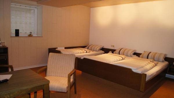 Hotel Pictures: Villa Bruderfels, Garni, Rodalben