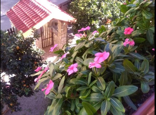 Hotellbilder: Casa Belvedere, Agrigento