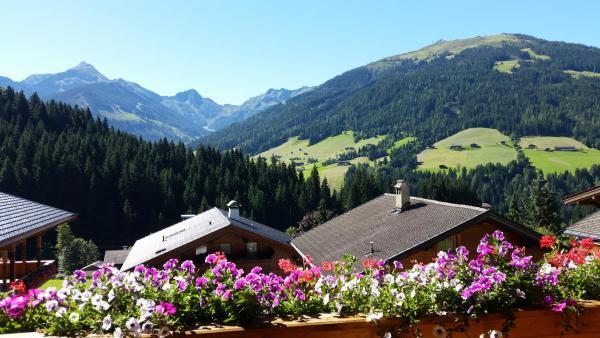 Hotel Pictures: Hanslerfeld, Alpbach