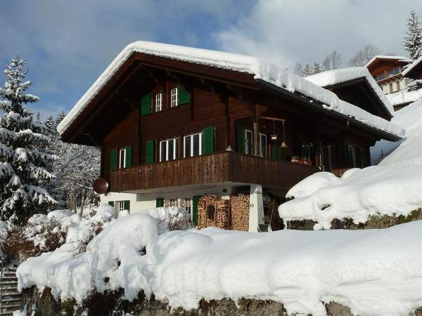 Hotel Pictures: Apartment Bach, Lenk