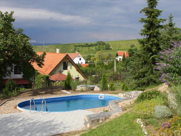 Hotel Pictures: Country House Horni Vestonice, Horní Věstonice