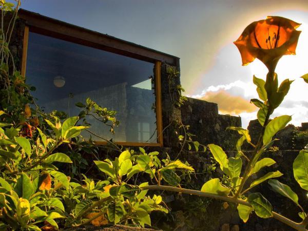 Hotel Pictures: Farm Stay Eco-Casa Bianca, Country Escape, Tinajo