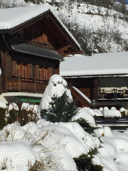 Hotel Pictures: Chez NatAlex, Vercorin