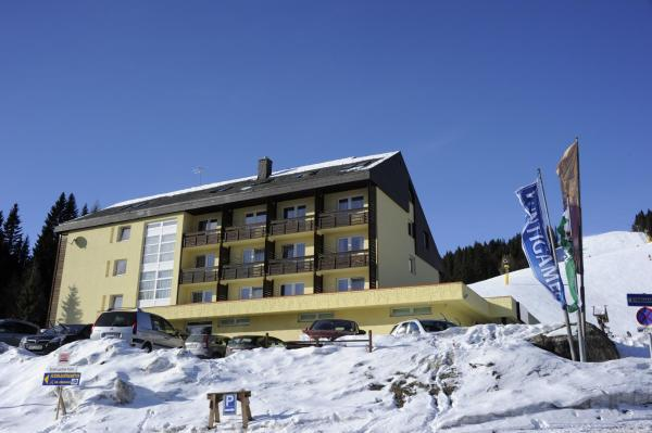 Hotel Pictures: Lachtalhaus, Lachtal