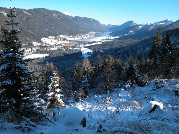 酒店图片: Kraners Alpenhof, 魏森湖