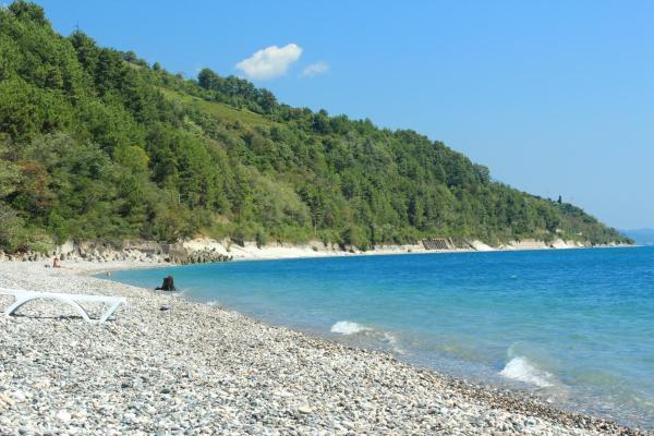 Абхазия отдых отзывы фото