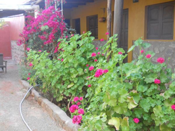 Фотографии отеля: Las Jarillas de Guandacol, Guandacol