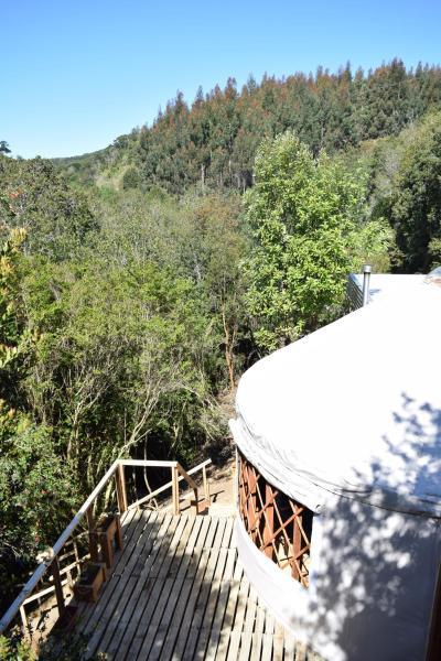 Фотографии отеля: Paihuen Yurts & turismo, Lechagua