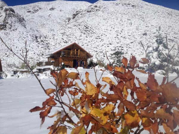 酒店图片: La Araucaria, Potrerillos