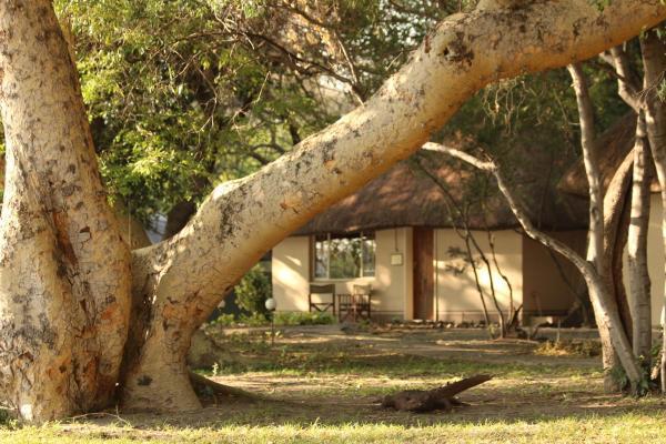 Hotel Pictures: Island Safari Lodge, Maun