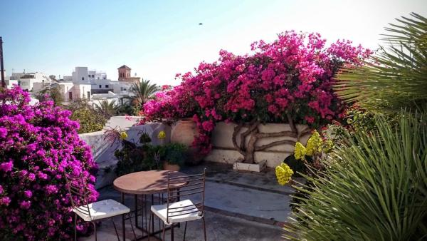 Hotel Pictures: Cortijo el Grillo, Níjar
