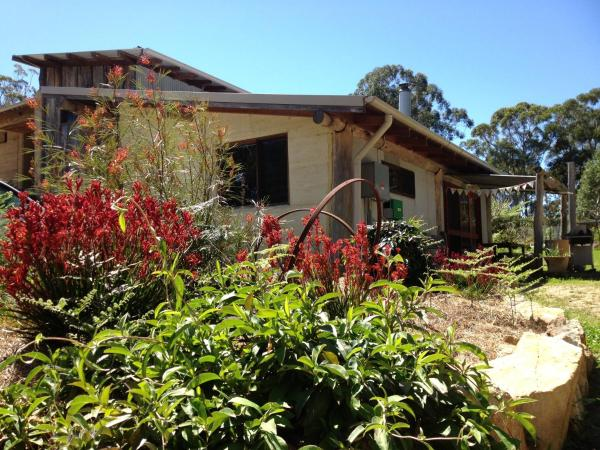 酒店图片: Garden to Table Permaculture, Blueys Beach