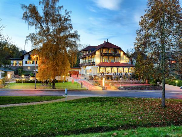 Hotel Pictures: Park Hotel, Boppard