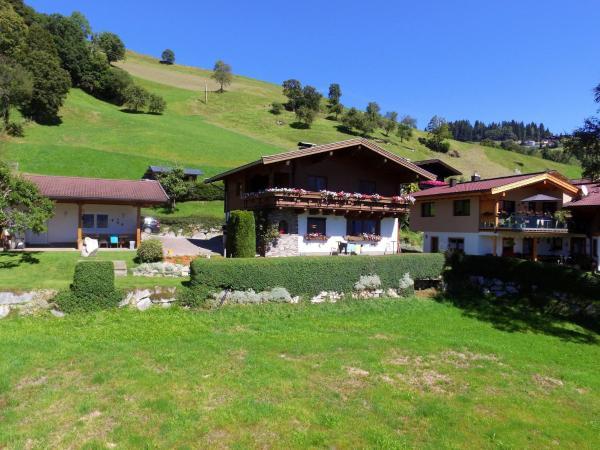 Photos de l'hôtel: Apartment Gipfelblick, Hollersbach im Pinzgau