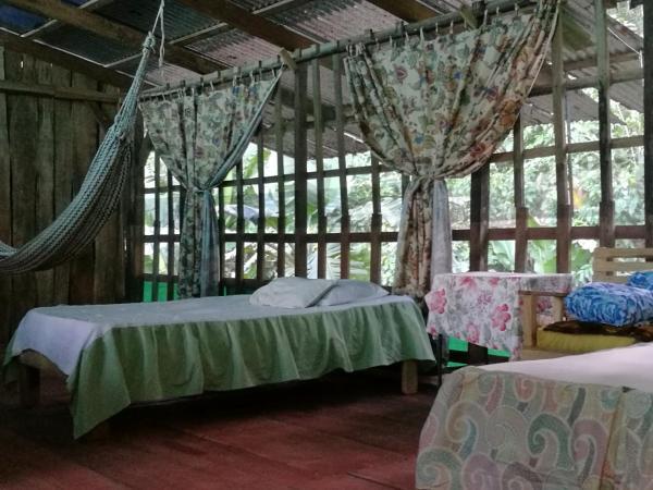 Hotel Pictures: Tortuguero Hill House, Tortuguero