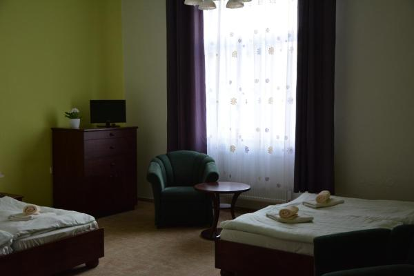 Hotel Pictures: Hotel Dermot, Letovice