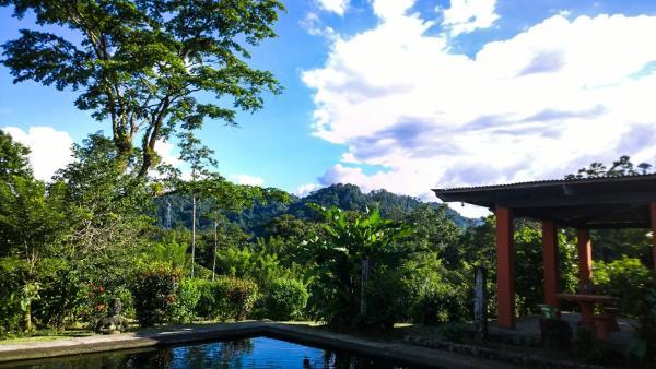 Hotel Pictures: Los Gallitos Hotel, San Miguel