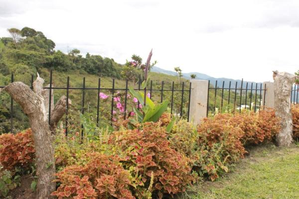 Hotel Pictures: Piraruku, Chachagüí