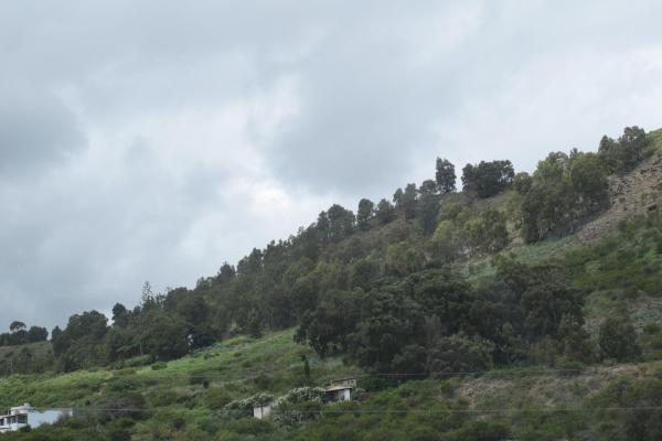 Hotel Pictures: Casa Milagros, Arucas