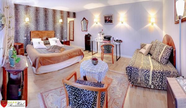 Hotel Pictures: Hotel Renaissance, Castres