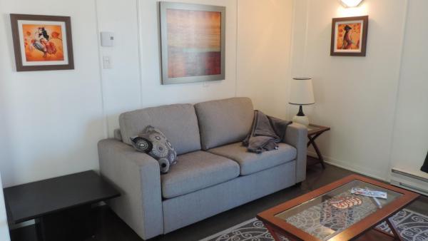 Hotel Pictures: Les appartements du Vieil Édifice 372 rue St-Jean, Metabetchouan