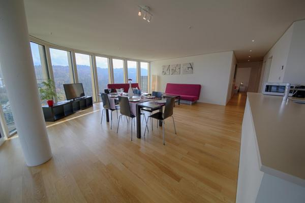 Hotel Pictures: HITrental Allmend Superior Apartments, Luzern