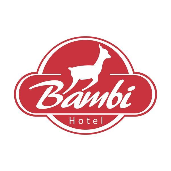 Zdjęcia hotelu: Bambi Hotel, La Falda