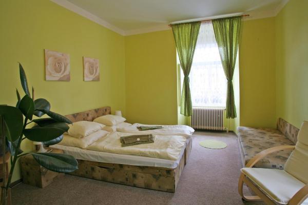 Hotel Pictures: Hotel Zlaty Jelen, Horažďovice