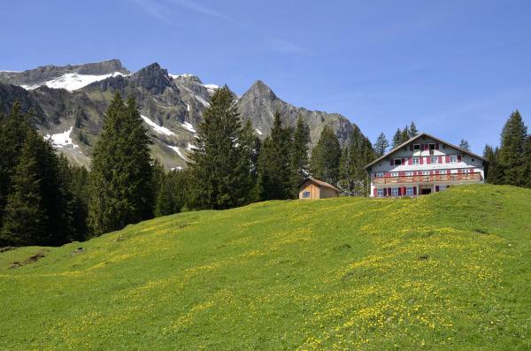 Hotelbilder: Alpengasthaus Edelweiss, Au im Bregenzerwald