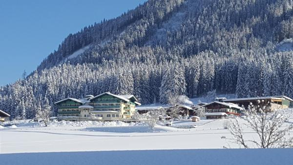 Hotel Pictures: Wohlfühlhotel Martinerhof, Sankt Martin am Tennengebirge