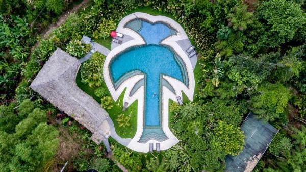 Hotel Pictures: Hakuna Matata Lodge, Archidona
