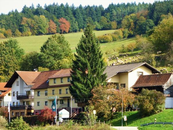 Hotelbilleder: Hotel Gasthof Zur Krone Odenwald-Sterne-Hotel, Beerfelden