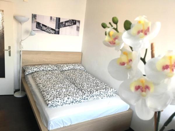Hotel Pictures: Business Appartement, Regensburg